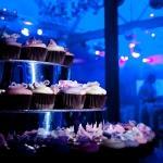 cupcake stand pastel