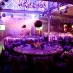 purple feather boa room overview