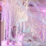 Unique Winter Wonderland branches snow