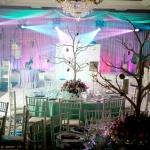 winter wonderland bar mitzvah