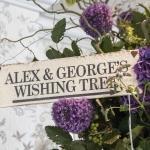 wishing tree angle