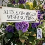 wishing tree alex and george