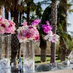orchid vases
