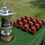 cricket cup balls